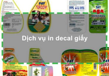 Dịch vụ in decal giấy